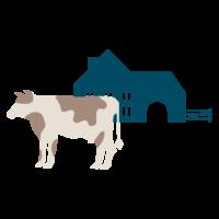 pictographie d'une vache devant une ferme